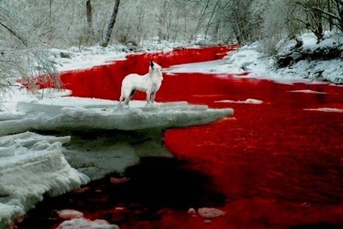 Aπ' το κόκκινο ως το μαύρο