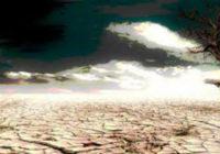 Κλιματική Αλλαγή: Η ξηρασία και η τροφική αλυσίδα