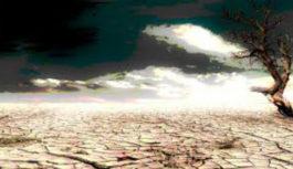 Η ξηρασία και η τροφική αλυσίδα