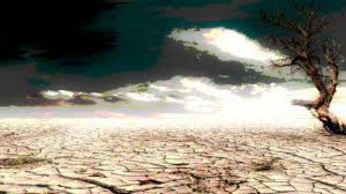 Κλιματική Αλλαγή: Η ξηρασία και η σίτιση (τροφική αλυσίδα)