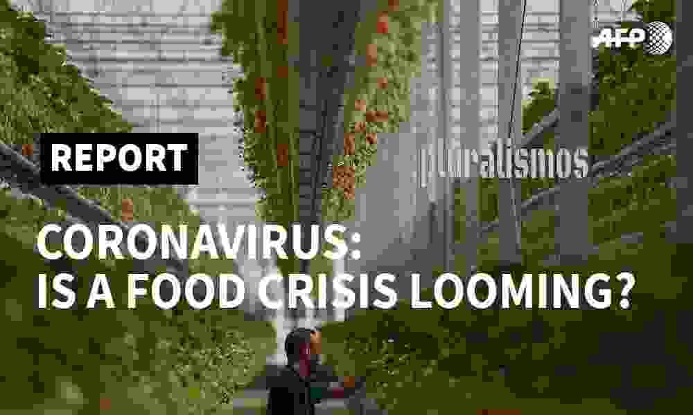 Κορωνοϊός : Απειλούμαστε απο επισιτιστική κρίση ;